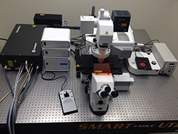 Two-color STED Microscope